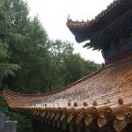 Сяо Цинь фото 2.