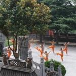 Сяо Цинь фото 6.