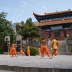 Сяо Цинь фото 10.