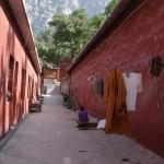 Сяо Цинь фото 14.