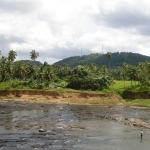 Шри-Ланка фото 3.